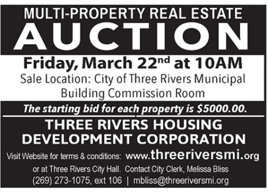 Multi Property Real Estate Auction