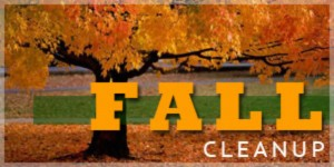 fall-cleanup-3