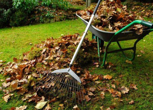 2020 Fall Leaf Pick Up